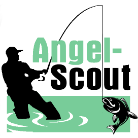 Angel-Scout